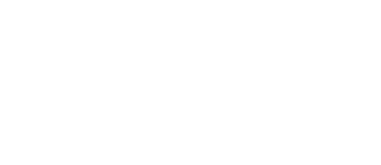 Superb Website Logo